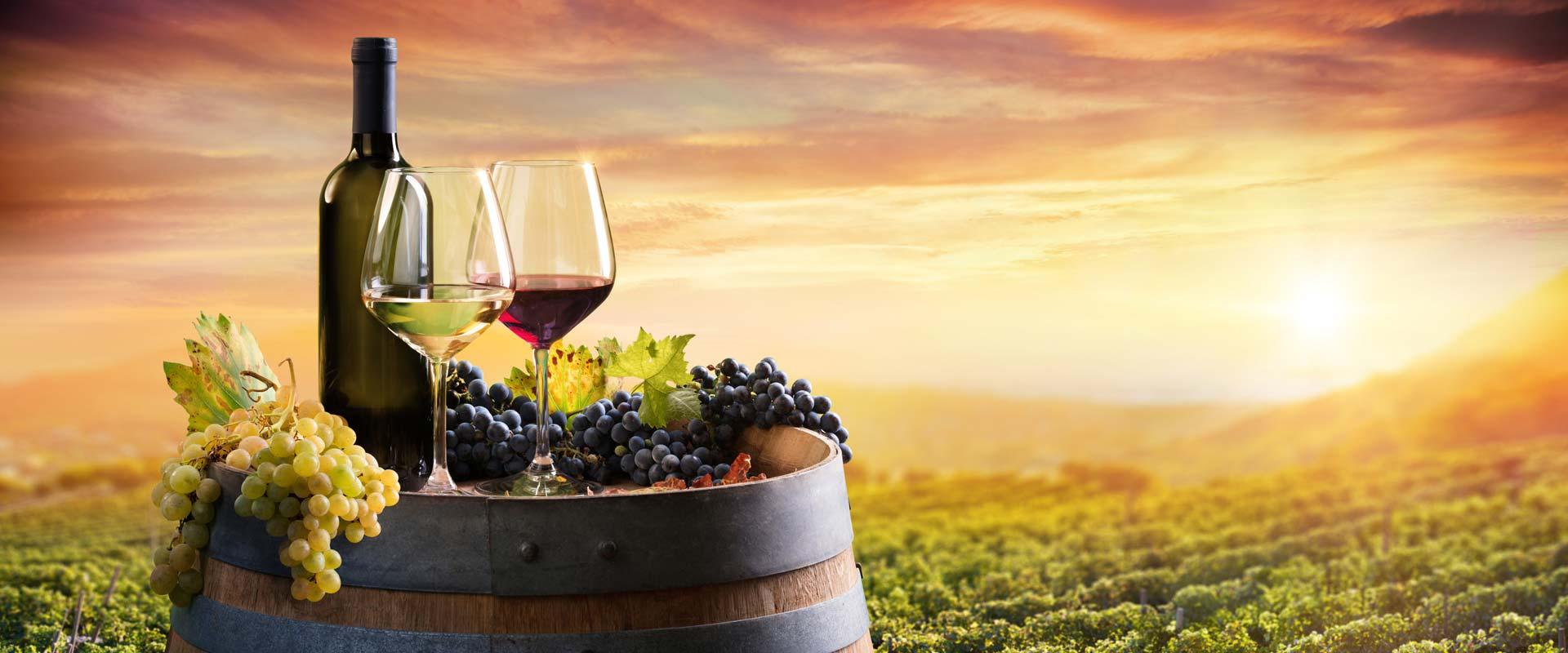 touring-niagara-wineries-niagara-falls-canada