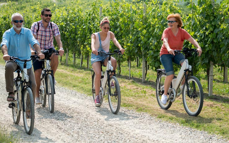 Niagara Bicycle Wine Tours